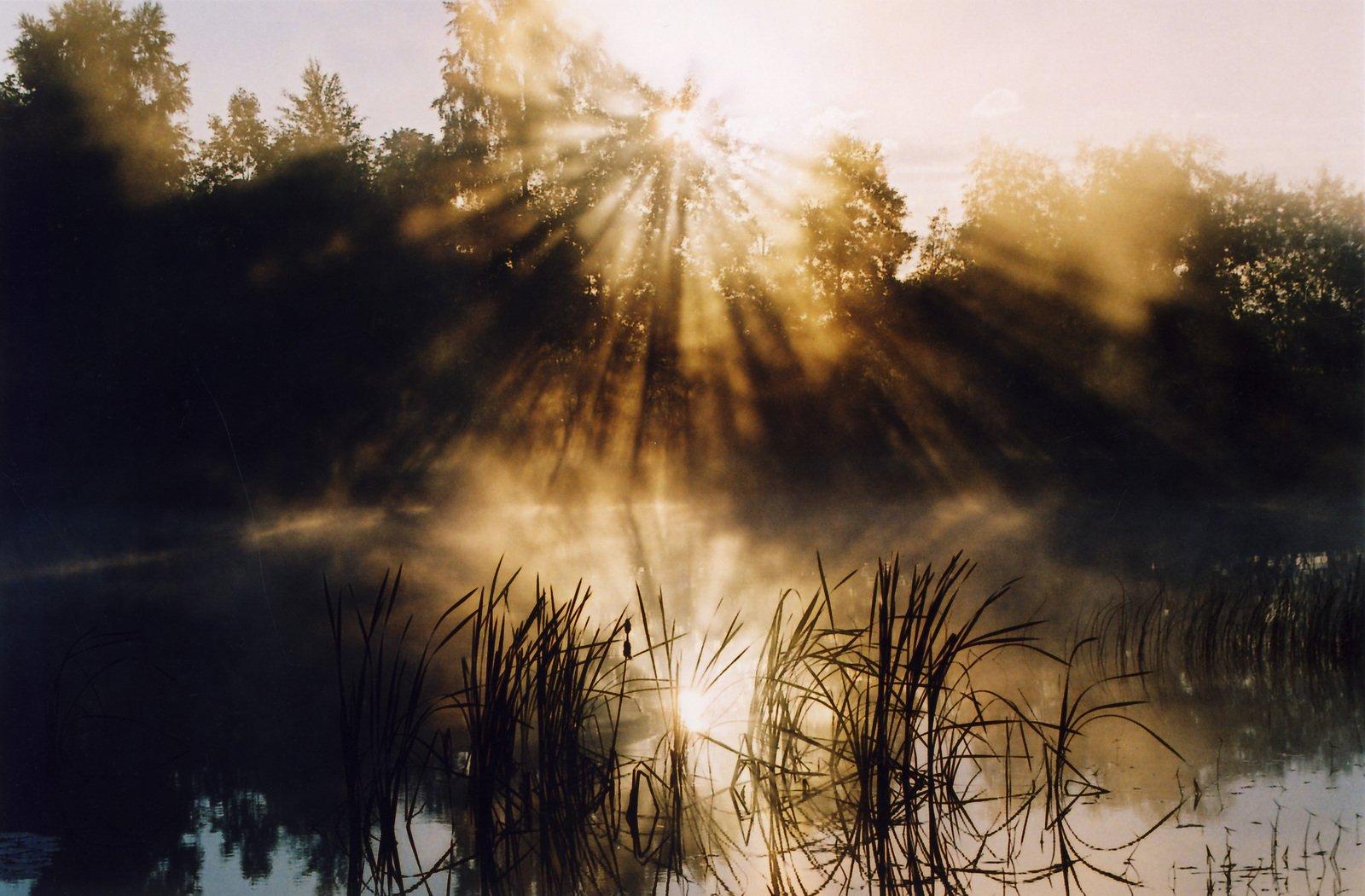 Magic Morning : la puissance des rituels