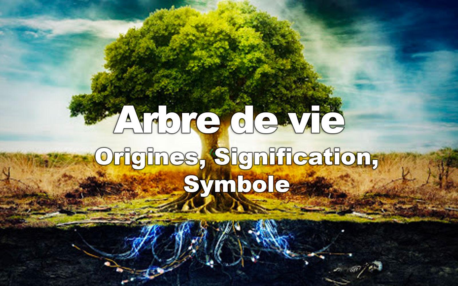 Arbre de vie : Origines, Signification, Symboles